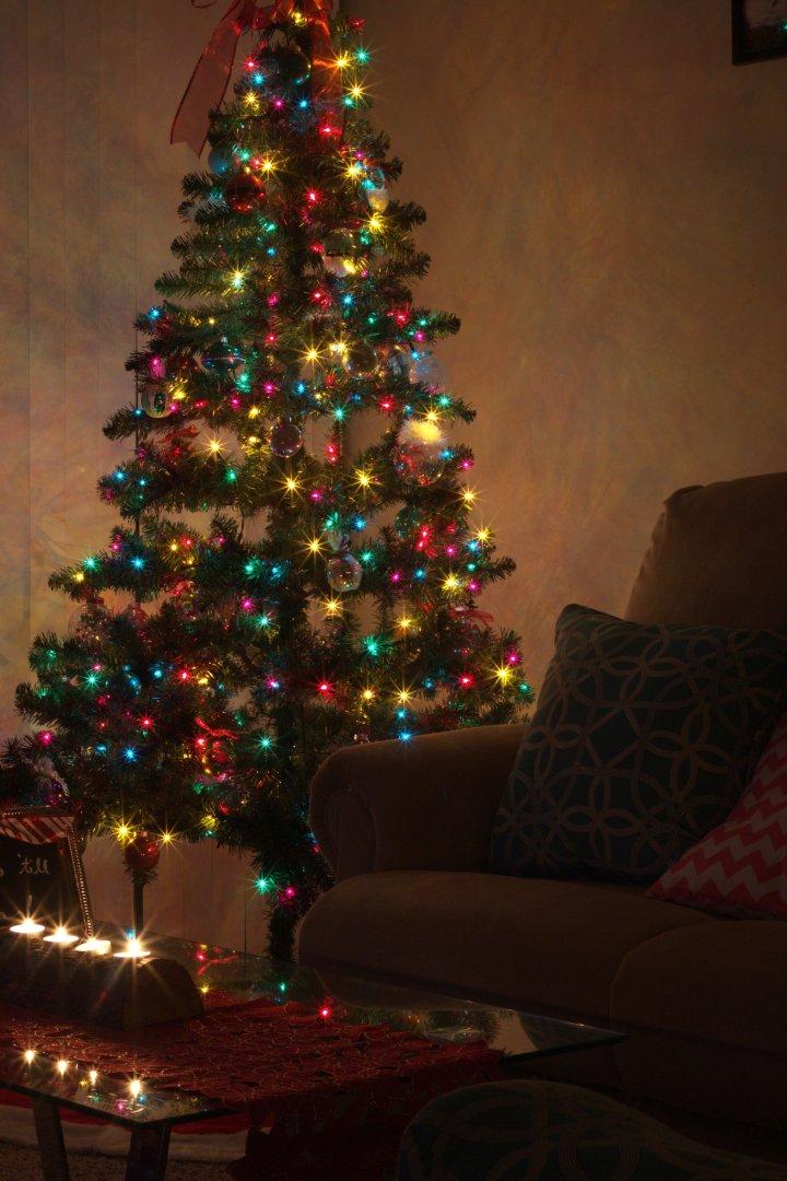 Christmas-12-14-2014-03