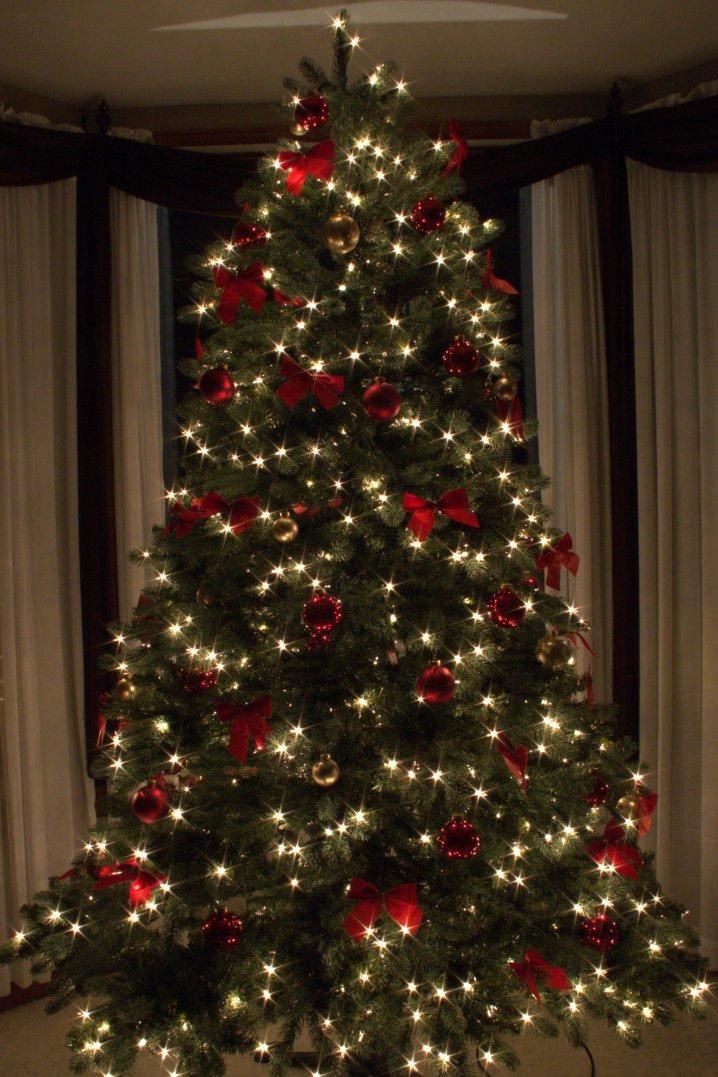 Christmas-12-14-2014-04