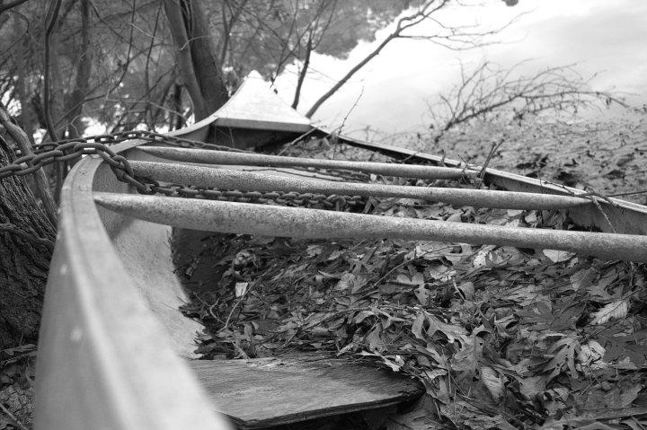 Kayak-02-01-2015-02