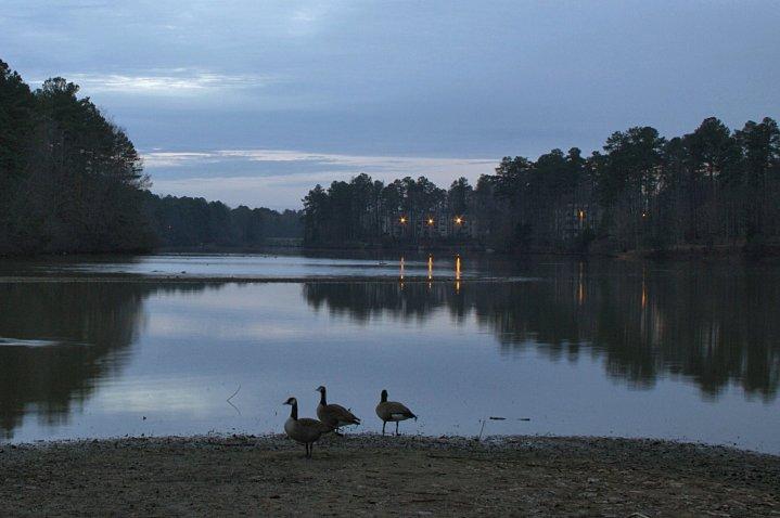 Lake-02-01-2015-12